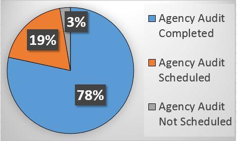 HMIS Agency Audit Update
